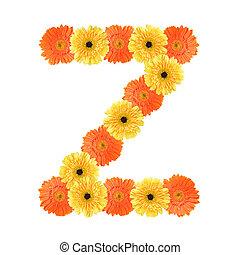 alfabeto, z, flor, criado