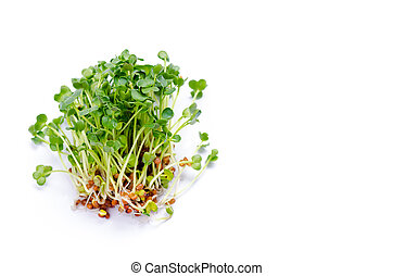 Alfalfa sprouts on white background. Raw sprouts,...