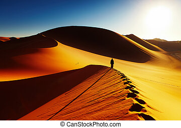 algéria, dezertál, szahara