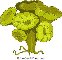 alga, caricatura
