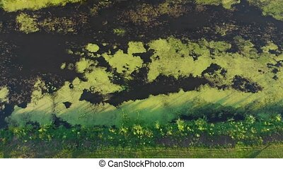 Algae river water aerial drone down bird eye view right side camera movement