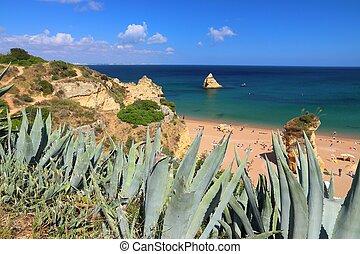 Algarve beach in Portugal