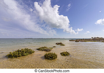 Algarve Cavacos beach seascape at Ria Formosa wetlands...