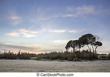 Algarve Cavacos beach sunset landscape at Ria Formosa wetlands reserve, southern Portugal.