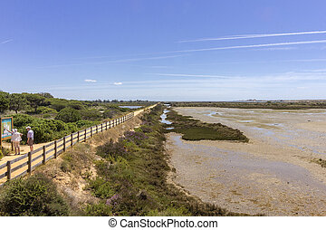 Algarve QDL landscape at Ria Formosa wetlands reserve,...