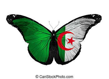 Algeria flag butterfly flying, isolated on white background