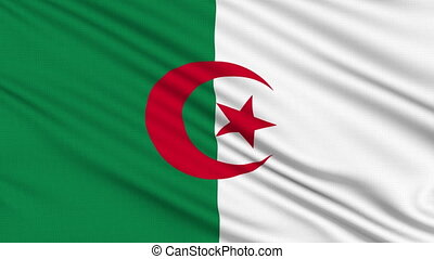 Algeria Flag, with real structure of a fabric