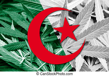 Algeria Flag on cannabis background. Drug policy....