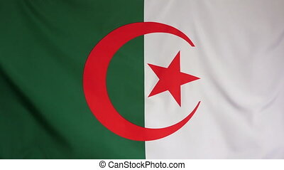 Algeria Flag real fabric close up - Textile flag of Algeria...