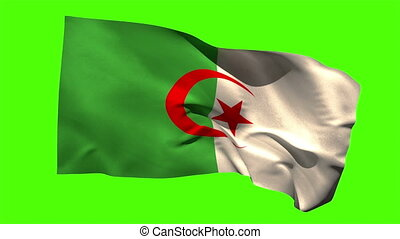Algeria national flag blowing in the breeze on green screen...