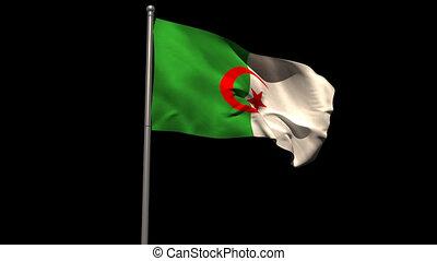 Algeria national flag waving on flagpole on black background