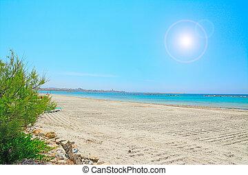Alghero shore on a sunny day