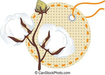 algodão, ramo, com, etiqueta, (gossypium