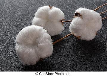 algodón, pelotas, en, un, fondo negro