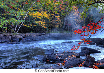algonquin, ποτάμι , καταρράκτης , μέσα , φθινόπωρο
