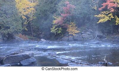 Algonquin, Canada river rapids in fall - Algonquin, Canada a...