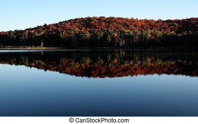 algonquin, outono, contorno costa