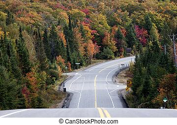 Algonquin Park Muskoka Ontario Road - Algonquin Park Muskoka...