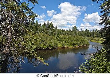 Algonquin Provincial Park view