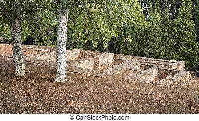 alhambra, 刻まれる, 木