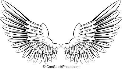 ali angelo
