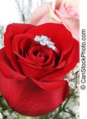 alianza, en, rosa, voluntad, usted, casar, me?