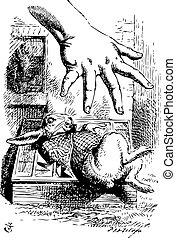 Alice stretches her hand and tries to grab the White Rabbit...