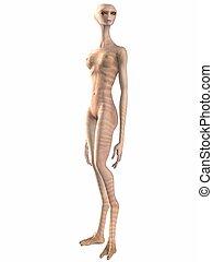 Alien - 3d render of a alien