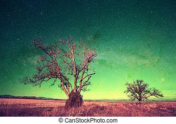 alien landscape series