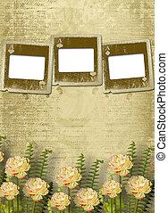 alienato, vecchio, stanza, parete, diapositive, fiori