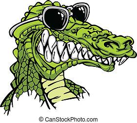 aligator, chodząc, gator, albo, sunglass