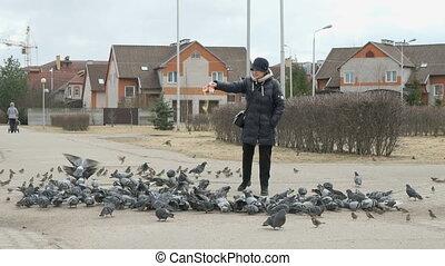 alimentation, 60s, pigeons, femme, troupeau, vieilli