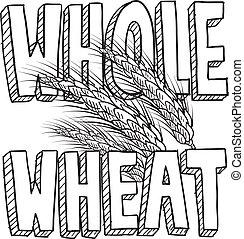 alimento, entero, bosquejo, trigo