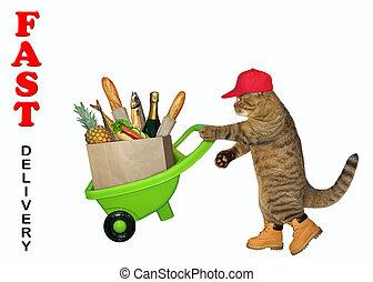alimento, entrega, gato, carretilla