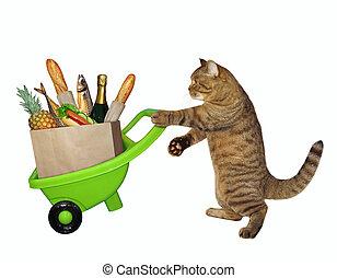 alimento, gato, carretilla