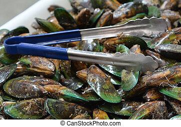 alimento, mariscos, -