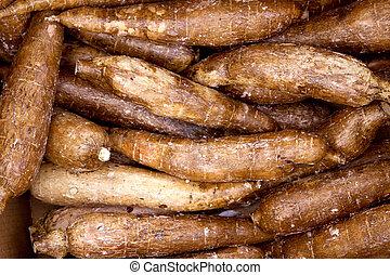 alimento, patrón, rhizomes, vegetal, yuca, mandioca