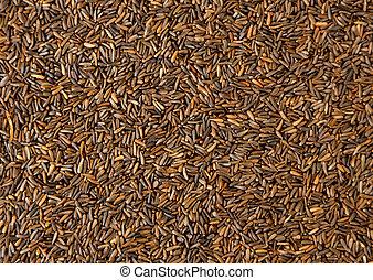 alimento, periquito, semilla, granular, mezclado, canarios,...