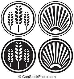 alimento saudável, e, grão, símbolos