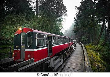 Alishan forest train railway