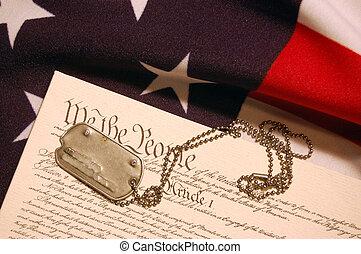 alkotmány, közül, usa