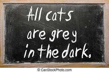 """All cats are grey in the dark"" written on a blackboard"
