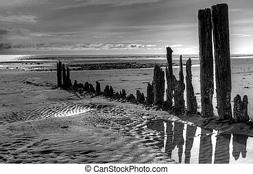 The remains of old wooden pier pillars on a beach near Homer Alaska at low tide in black and white.