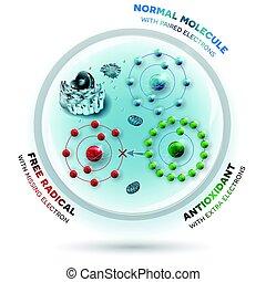 alla, donates, felande, paired., antioxidant, arbeten, radicals., gratis, hur, elektron, elektronerna, mot, radikal, nu