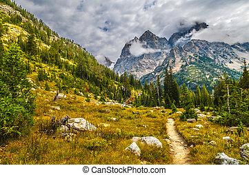 allant pied piste, parc, national, -, cascade, canyon, grand...