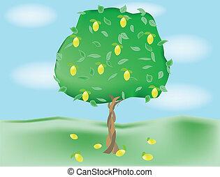 alleen, groeiende, boompje
