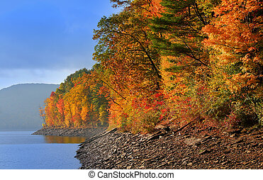 Allegheny national forest - Scenic autumn landscape in...
