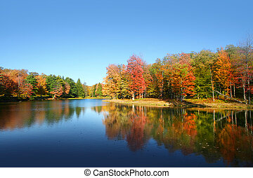 Allegheny national forest - Colorful autumn tree reflections...