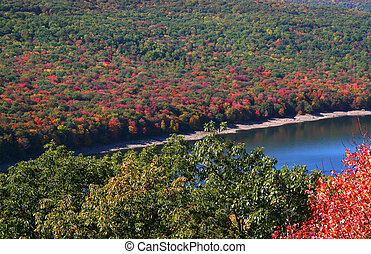 Allegheny national park in Pennsylvania in autumn time