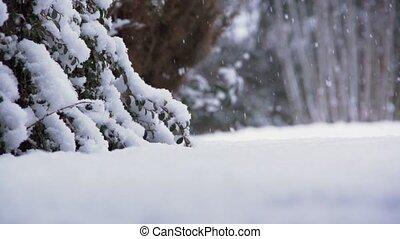 allemagne, hiver
